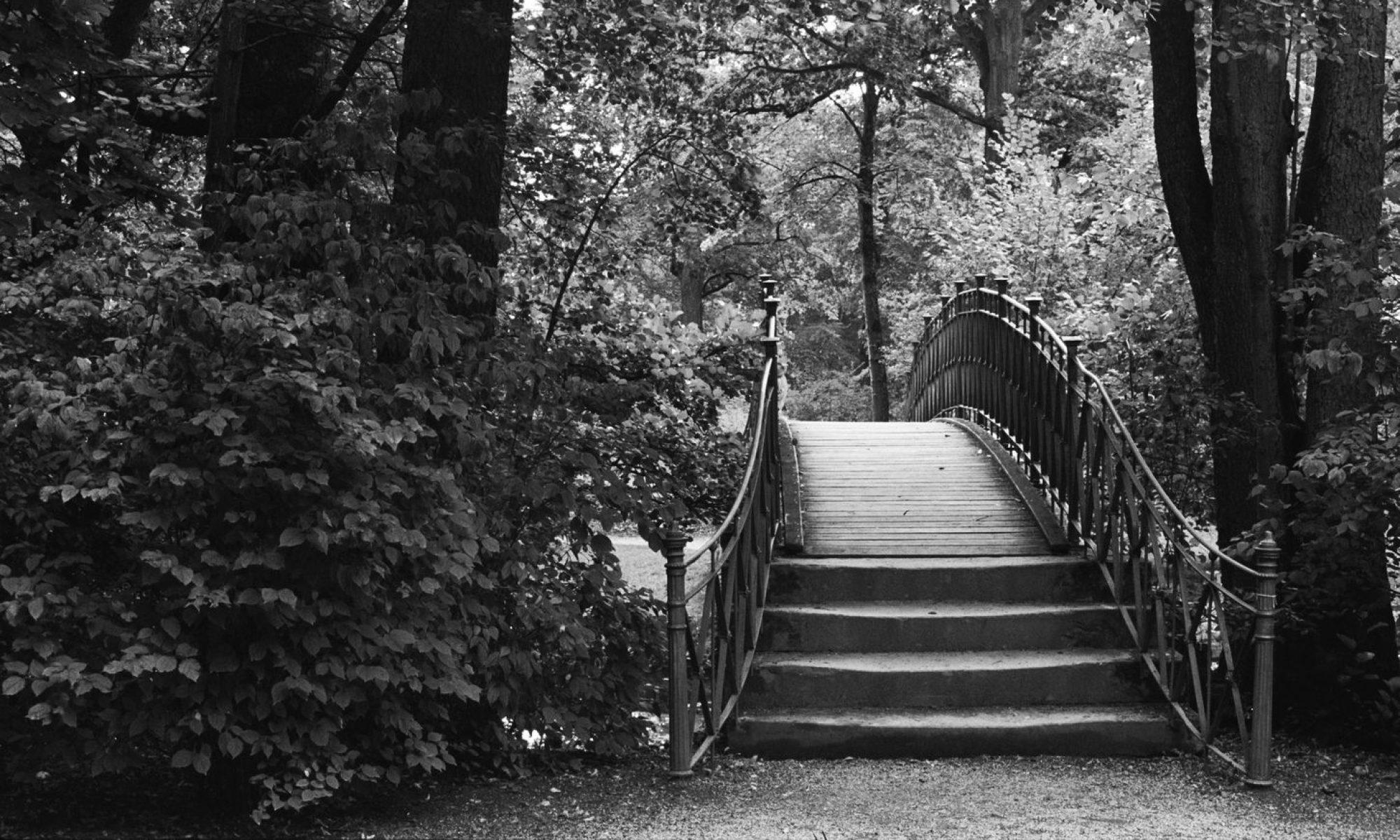 Dichter | Denker | Photograph - Wort u. Bild kunstvoll inszeniert