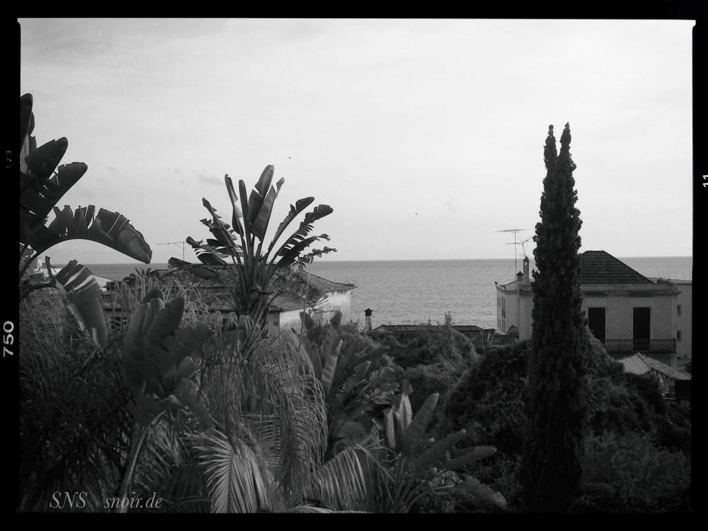Madeira SW 1
